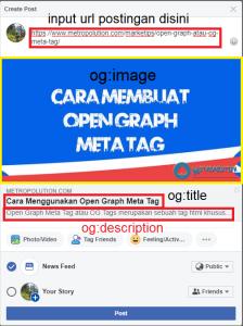 facebook preview