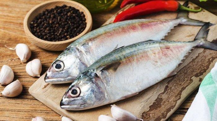 Suka Makan Ikan Tongkol? Ini Manfaatnya untuk Kesehatan!